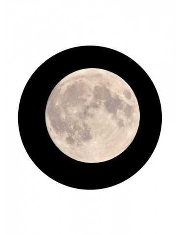 Volle maan in de lente