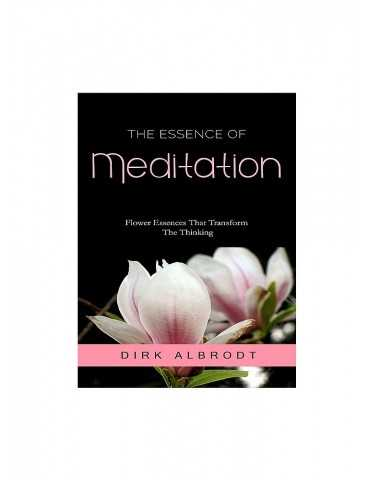 Dirk Albrodt - The Essence of Meditation