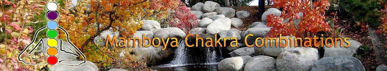 Chakra Flower Essences