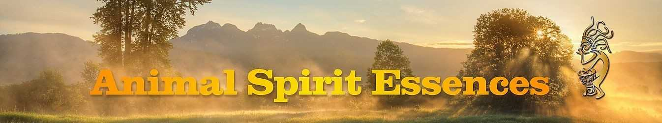 Animal Spirit Essences for the support of shamanic healing